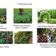 ландшафтное проектирование - плодовый сад
