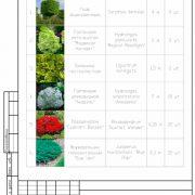 План посадки растений для участка