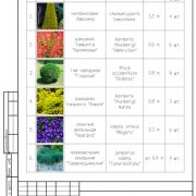 Проектирование ландшафта: перечень растений